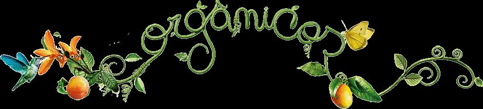 Certificações orgânicas (órgãos regulamentadores)   Use Orgânico