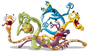 Como eliminar parasitas do corpo, através de produtos naturais?