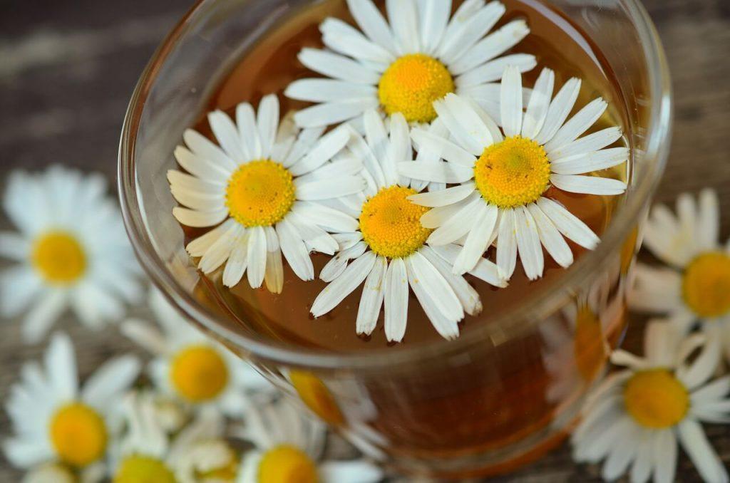 Aromaterapia contra a insônia: conheça 5 óleos essenciais que vão fazer você dormir melhor!