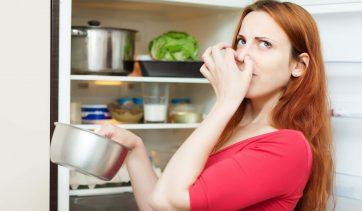 Como combater o desperdício de alimentos em sua casa? | Use Orgânico
