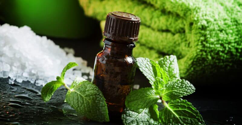 Verão Natural: 10 óleos essenciais que merecem um lugar em sua bolsa de praia