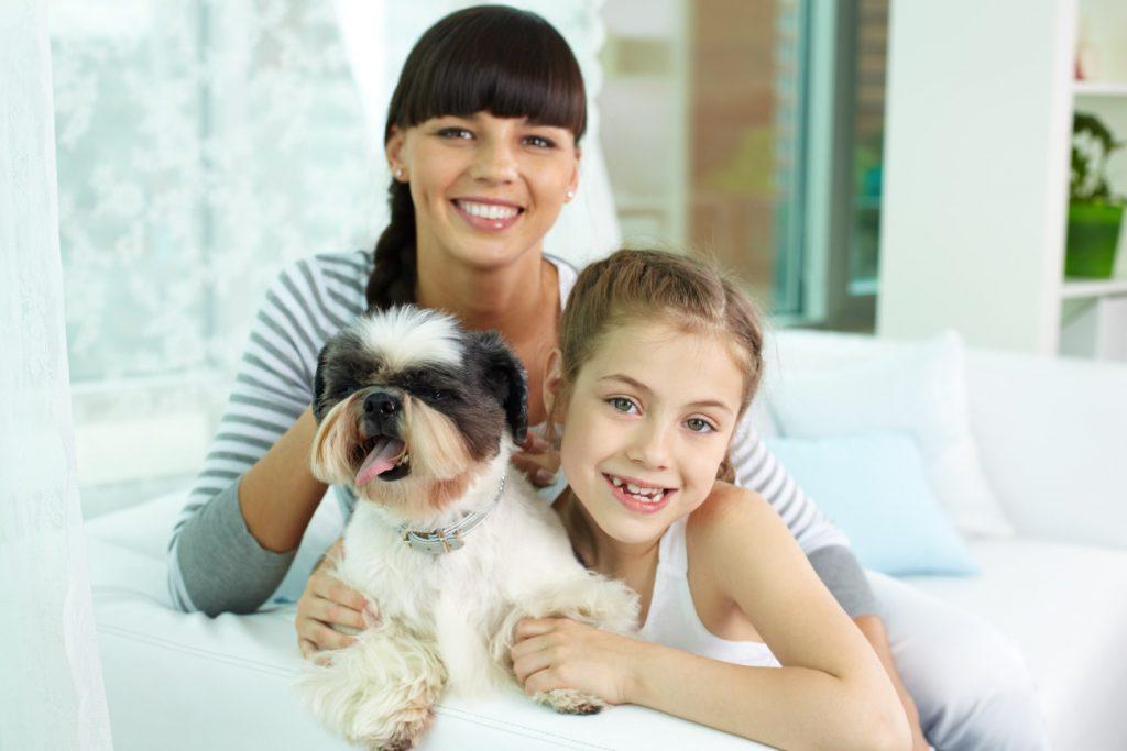Pet família